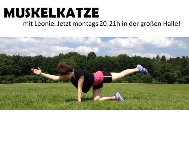 Neues Fitnessangebot: Muskelkatze
